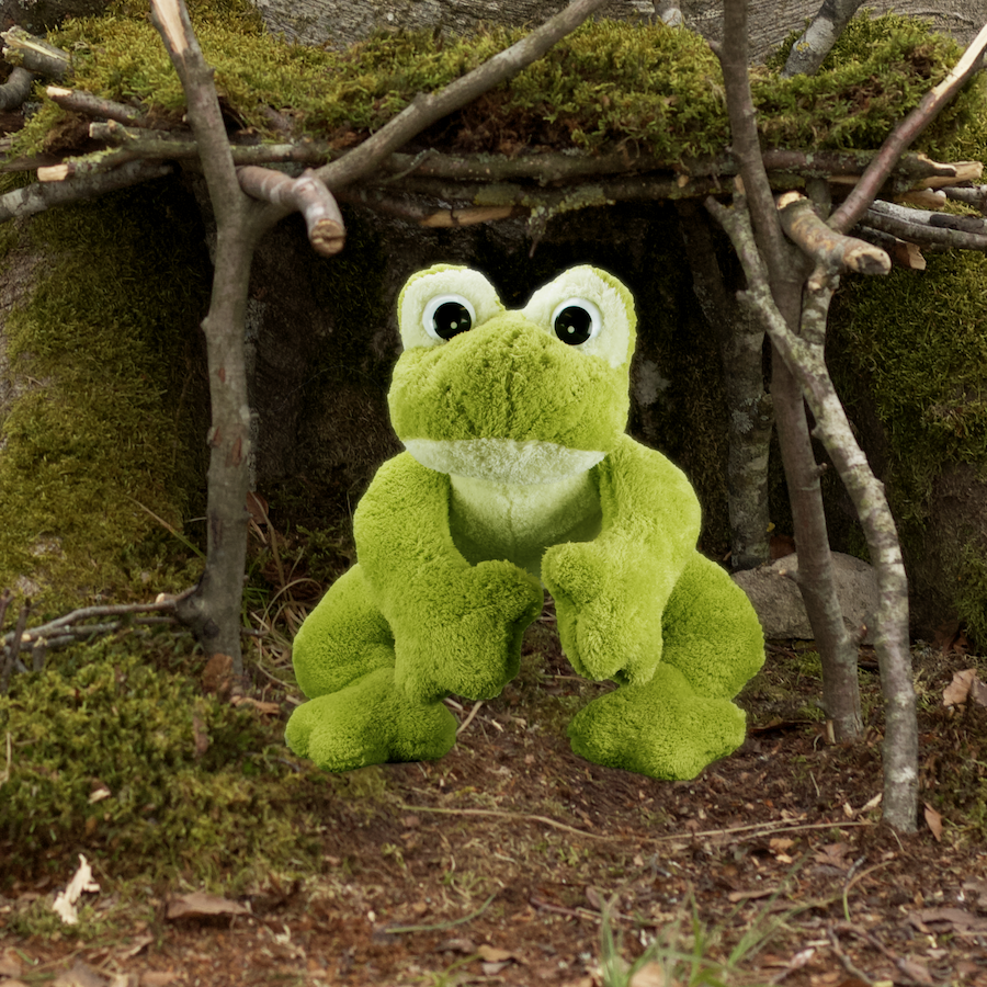 Henry der Frosch